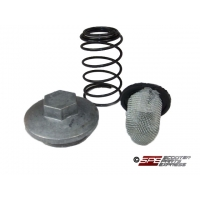 Oil Filter Screen OEM Replacement Kit, Complete, 4 Stroke, GY6 50, GY6-125, GY6 150,