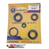 Oil Seal Kit CFmoto CF150 Water Cooled 4 stroke 1P58MJ 157MJ E-Charm E-Jewel
