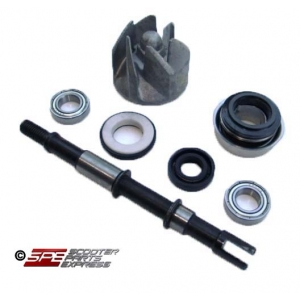 Water Pump Kit CFmoto 250cc 172MM CF250 CN250 Scooter ATV Quad Buggy Go Kart